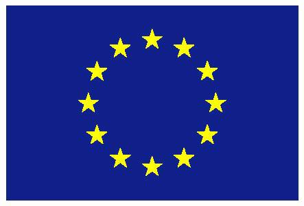 12_euflagge